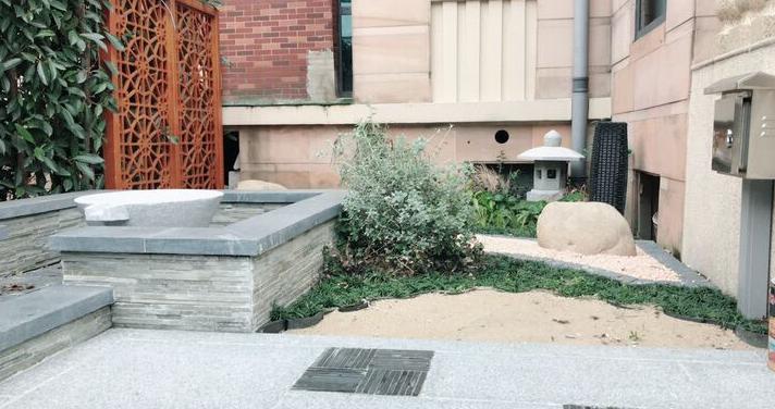 庭院设计中的驱虫植物