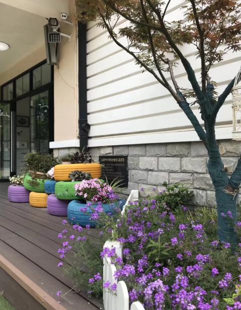 庭院设计植物的巧妙搭配
